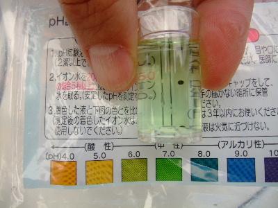 2010_04030021.JPG