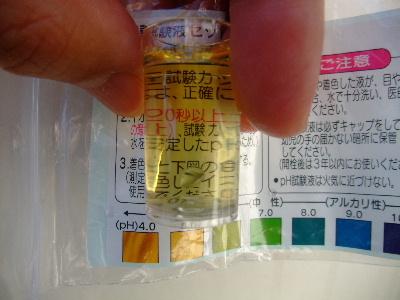 2010_04030041.JPG