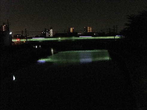 2011_05210013.JPG